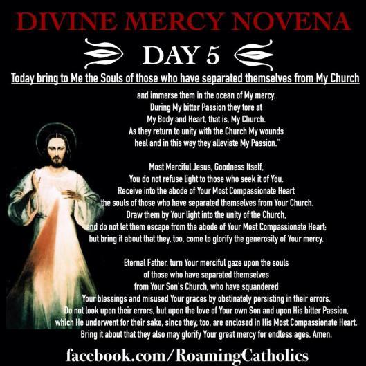 Divine Mercy Novena 5