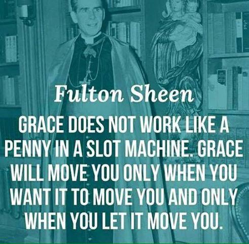 sheen-grace